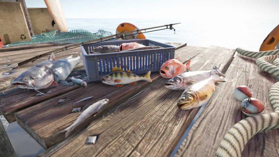 Rust balık nasıl tutulur
